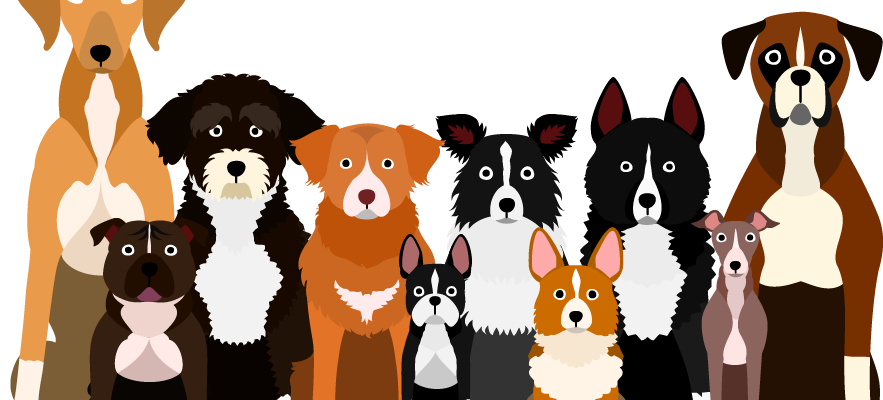 Cartoon dogs all breeds